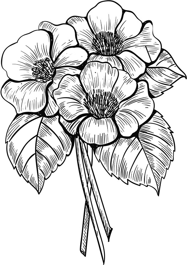 Floral_coloring_pages_21