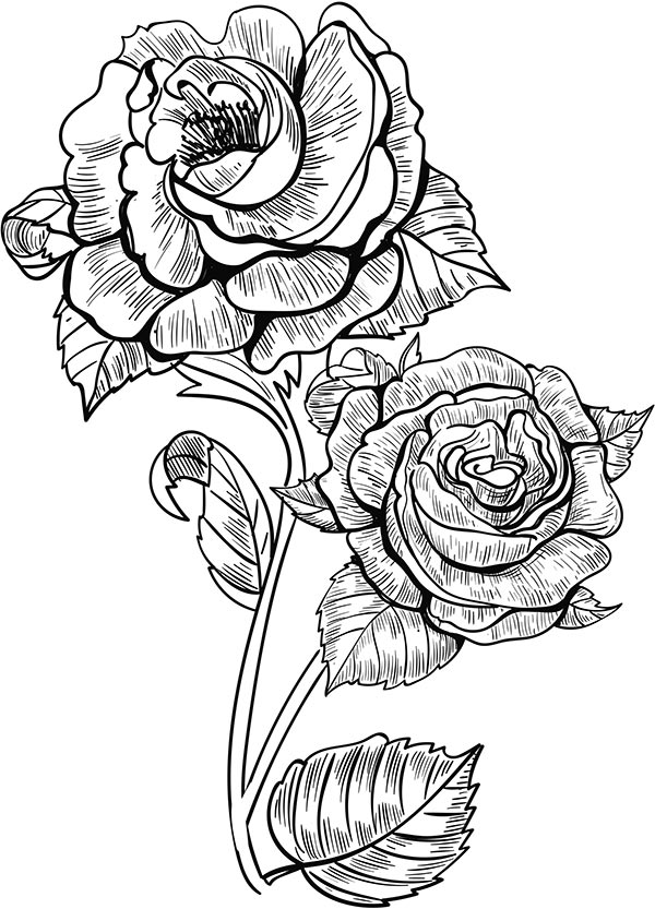 Floral_coloring_pages_22