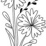 Floral_coloring_pages_thumb_18