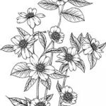 Floral_coloring_pages_thumb_20