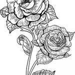 Floral_coloring_pages_thumb_22