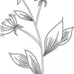 Floral_coloring_pages_thumb_24