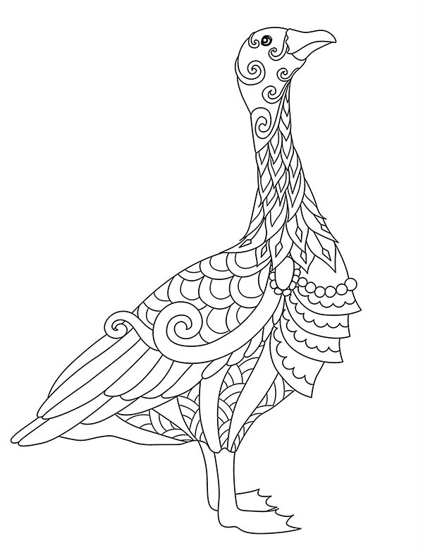Free_coloring_pages_of_Bird