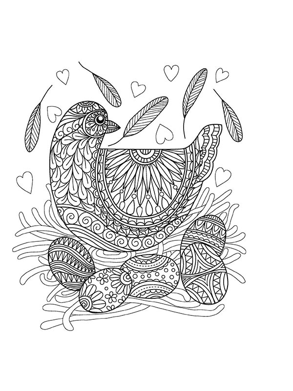 Free_coloring_pages_of_Birds_7