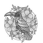 Free_coloring_pages_of_Birds